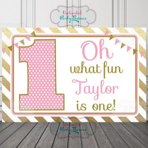 1st Birthday Girl Backdrop